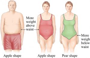 Distribucija maščevja po telesu. Poznamo porazdelitev maščobe v obliki jabolka in porazdelitev maščobe v obliki hruške. Slednja je bolj značilna za ženske in nosi manjše tvegaje za obolenja, saj je visceralne maščobe manj.